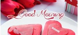 morning mubarak ho..
