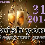 Happy New Year Best Wishes SMS Shayari